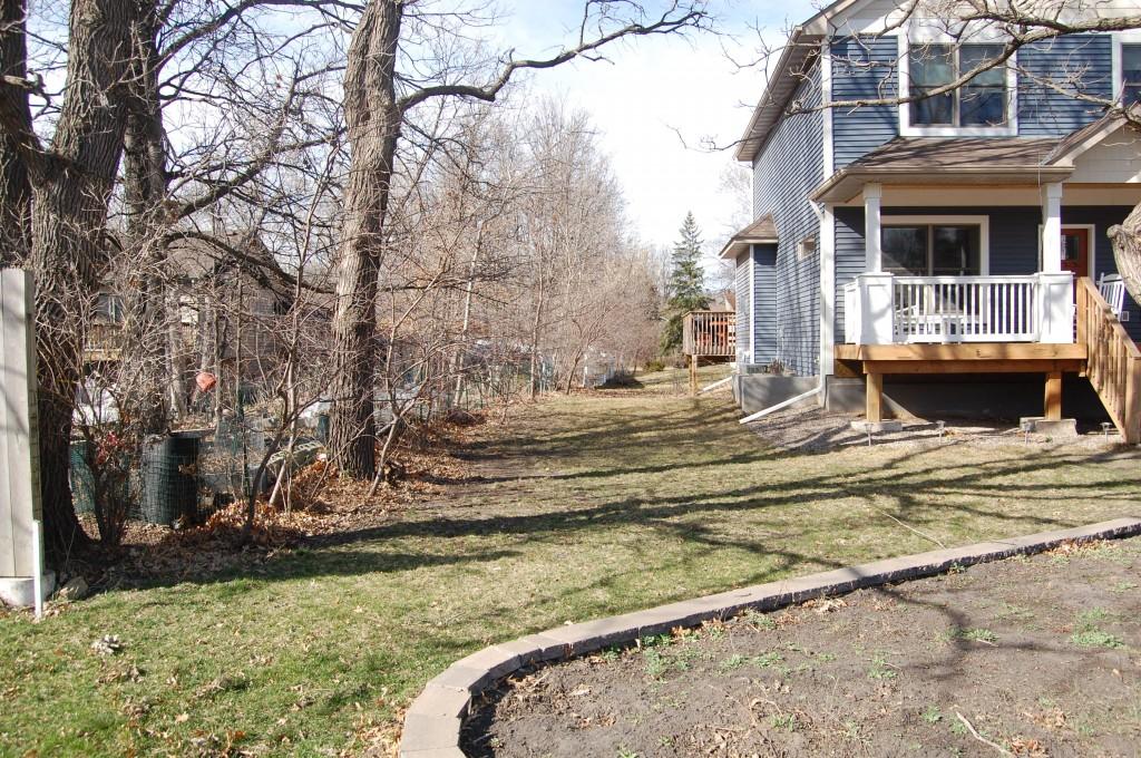 Side yard 2010