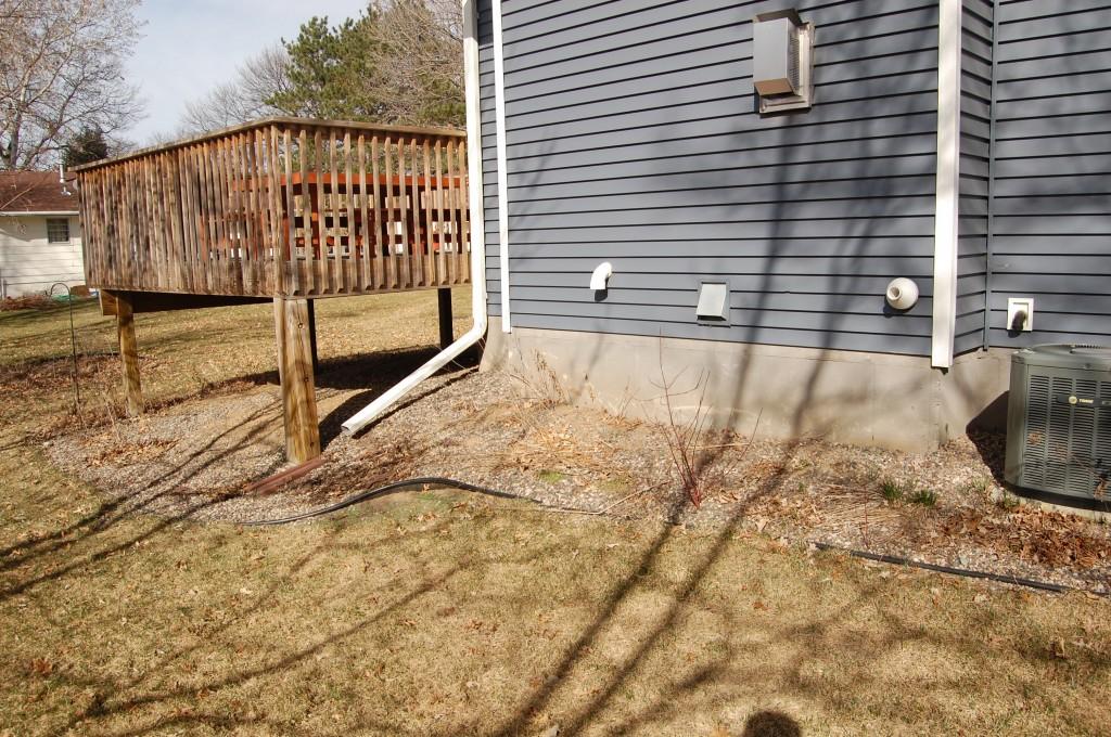 Side yard 2010 2